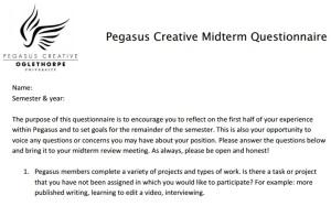 Pegasus midterm questionnaire